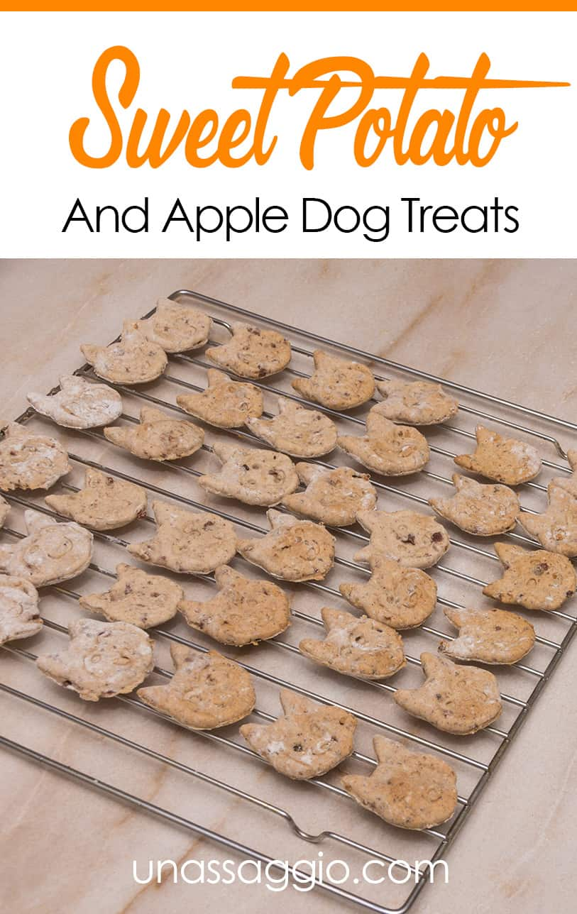 Sweet Potato And Apple Dog Treats