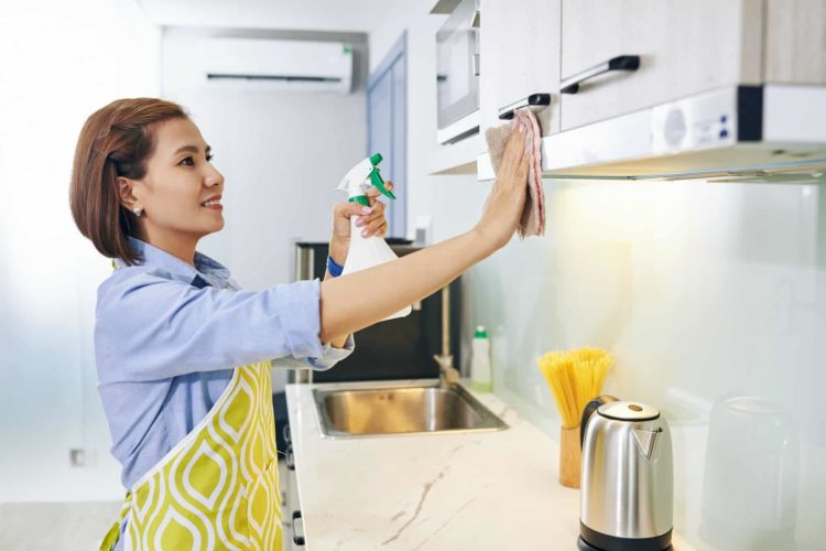 Disinfecting kitchen cabinets get rid of ants inside kitchen cabinet