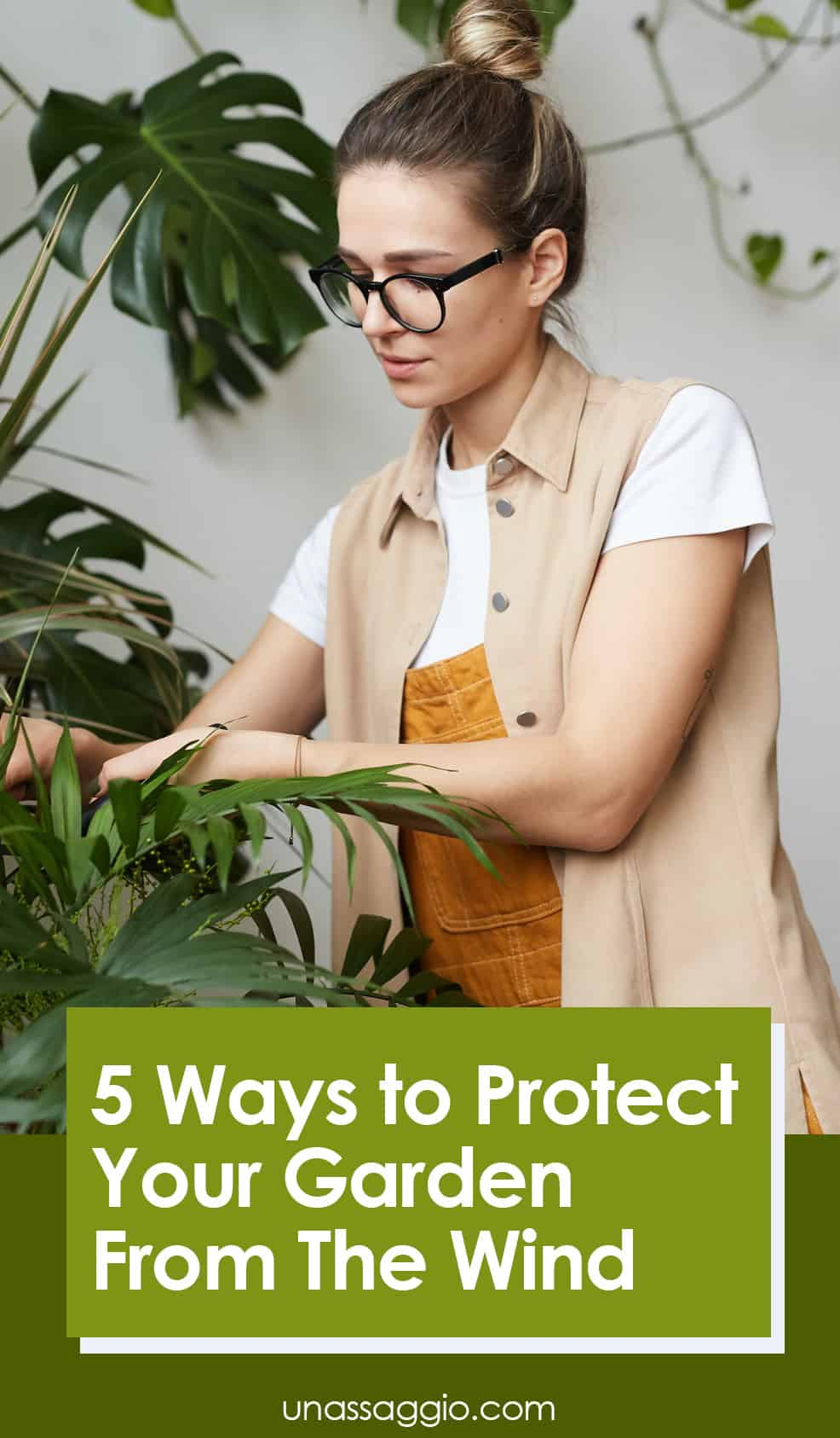 5 Ways to Protect Your Garden From The Wind