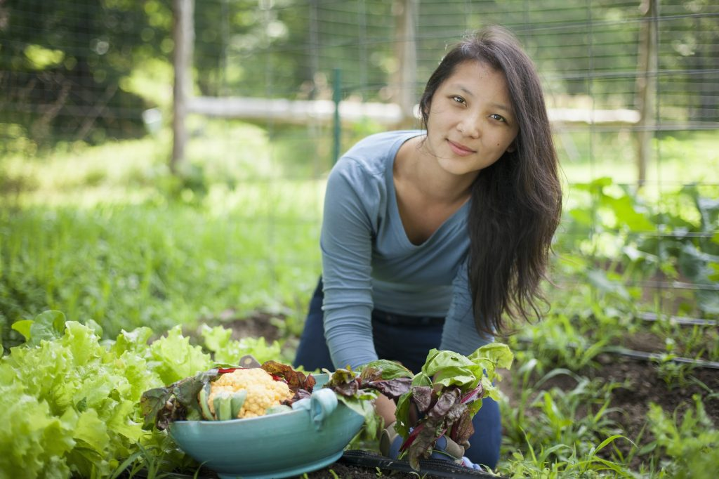 4 Reasons Why Urban Farming Is Encouraged In Developing Countries