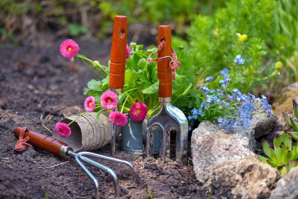 What Does Organic Mean In Gardening?