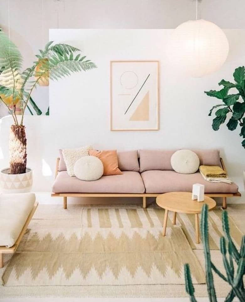 Clutter Free Peach Living Room