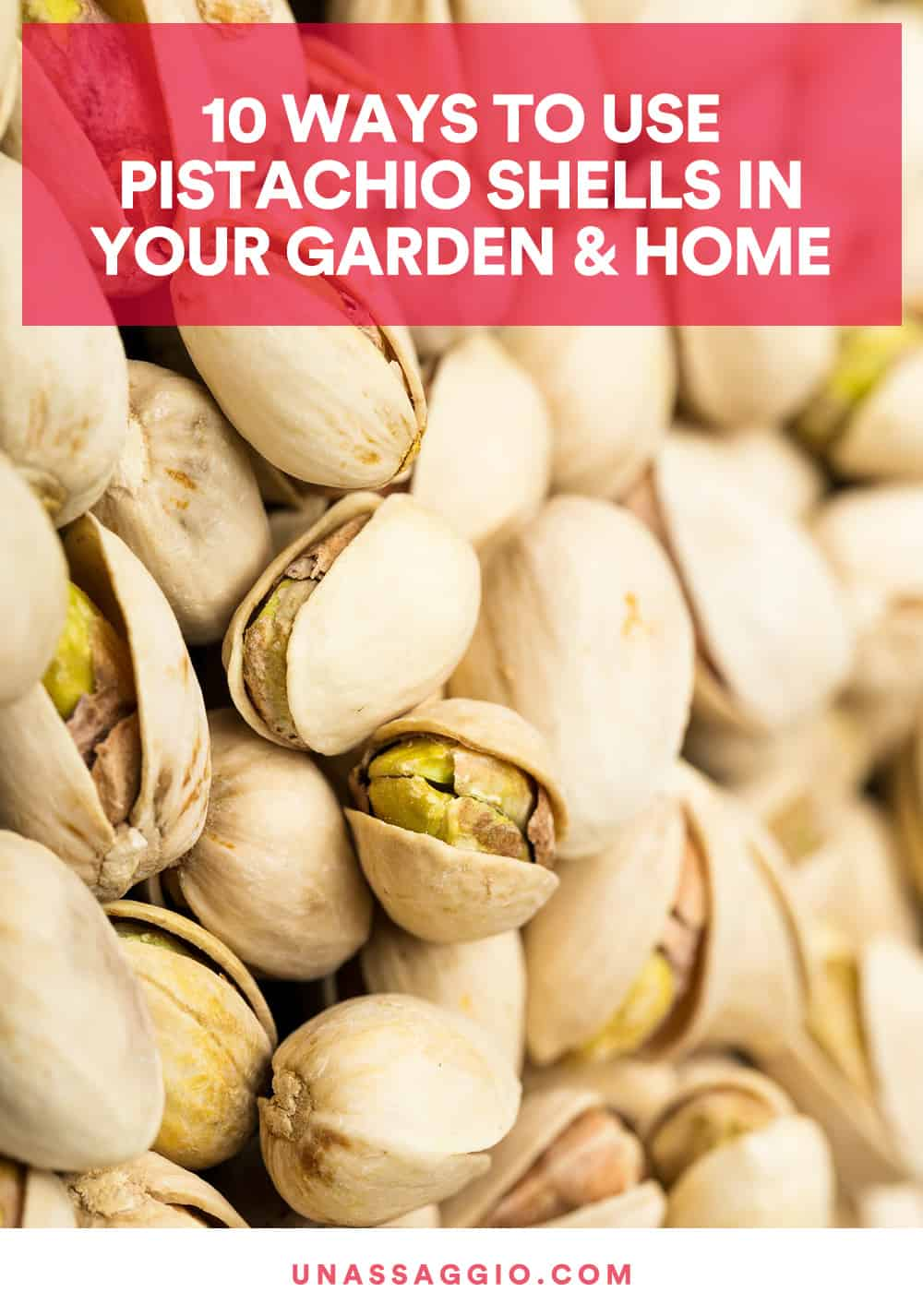 10 Creative Ways To Use Pistachio Shells In Your Garden
