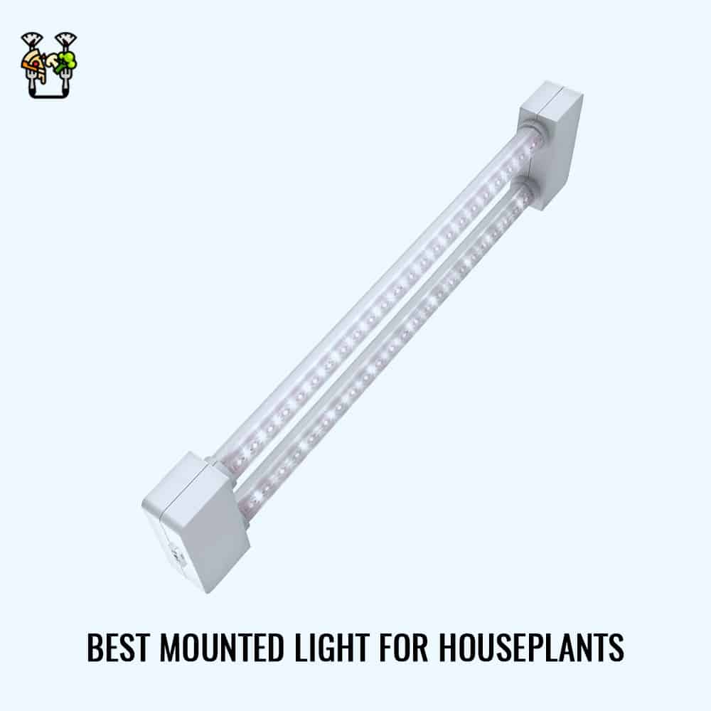 Feit Electrical Dual Full Led Plant Grow Light- Best Mounted