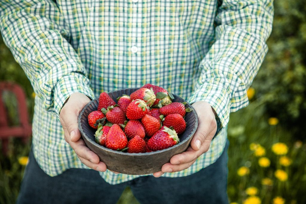 How to Take Care Of Your Strawberry Plants In Winter