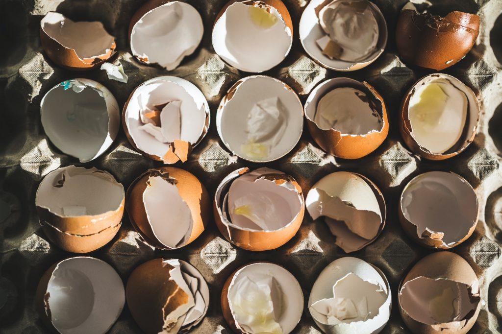 Are Eggshells Biodegradable?